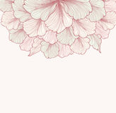 Abstract floral background with flower. Flourish border Gentle d Royalty Free Stock Photography