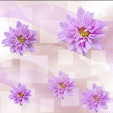 Abstract floral background with geometrical elemens and striped Royalty Free Stock Photography