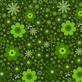 Abstract floral background green Stock Images