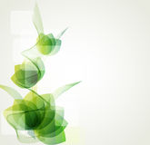 Abstract floral  background. Abstract background green floral  background Royalty Free Stock Photography