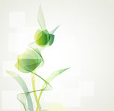 Abstract floral  background. Abstract background green floral  background Royalty Free Stock Photos