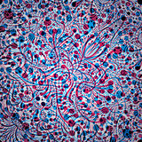 Abstract floral background in red and blue colors. Stock Image