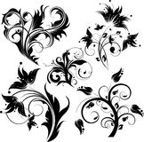 Abstract floral background's set. Royalty Free Stock Photo
