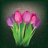 Abstract floral background with tulips Stock Photos