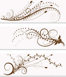 Abstract floral banner. Collection of abstract floral banner Stock Photo