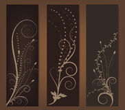 Abstract floral banner Royalty Free Stock Photo