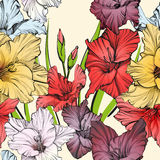 Abstract floral blooming gladiolus background texture hand drawn vector illustration Royalty Free Stock Images