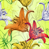Abstract floral blooming lilies background  texture hand drawn vector illustration  sketch Stock Images