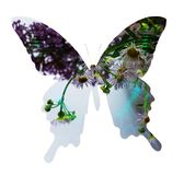Abstract floral butterfly royalty free stock photo