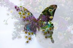 Abstract floral butterfly royalty free stock photography