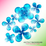 Abstract floral composition Royalty Free Stock Photography