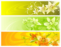 Abstract floral design. Stock Photos