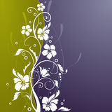 Abstract floral design. Abstyract floral design in perple and green Stock Photo