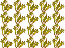 Abstract. Floral design combination of lines and dots and white background color, design / ornament form a flower / leaf / plant mix of yellowish green color Stock Photos