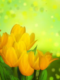 Abstract floral Easter background Royalty Free Stock Images