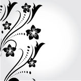 Abstract floral element for design. Illustration background Stock Photos