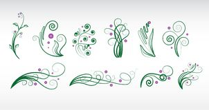 Abstract floral elements set Stock Photography