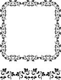 Abstract floral frame and border Royalty Free Stock Images