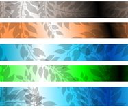 Abstract floral header isolated Stock Image