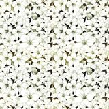 Floral illustrated abstract background. Abstract floral illustrated background of white flowers and green leaves stock illustration