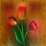 Abstract floral illustration royalty free illustration