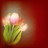 Abstract floral illustration with red tulips Stock Photography