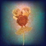 Abstract floral illustration with roses Stock Photos
