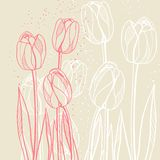Abstract floral illustration with tulips on beige Stock Image