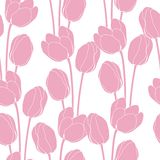 Abstract floral illustration with tulips on pink Royalty Free Stock Image