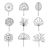 Abstract Floral Line Drawing Design Elements Stock Photo