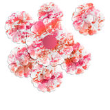 Abstract floral objects Royalty Free Stock Images