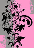 Abstract floral ornament. Illustration of abstract floral ornament in black, pink and grey colors Royalty Free Stock Photography