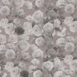 Abstract  floral pattern background. Abstract floral pattern on beige background Royalty Free Stock Photos