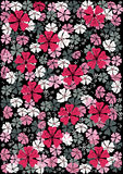 Abstract  floral pattern background Stock Image