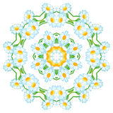 On an abstract floral pattern circular.,. Abstract circular pattern floral pattern. Vector. illustration Royalty Free Stock Images