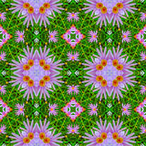 Abstract floral pattern 1 Royalty Free Stock Image