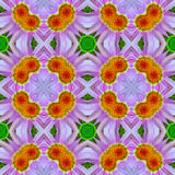 Abstract floral pattern 5. Abstract psychedelic floral pattern that looks like wallpaper 5 royalty free stock photos