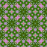 Abstract floral pattern 6 Royalty Free Stock Photography