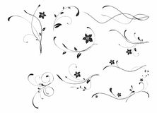 Abstract floral patterns. Abstract floral black patterns on white backdrop Stock Images