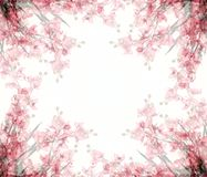Abstract Floral Photo Frames Stock Photography