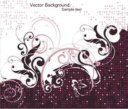 Abstract Floral pink Background. Vector Royalty Free Stock Photography