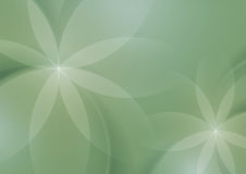 Abstract Floral on Sage Green Background Royalty Free Stock Photo