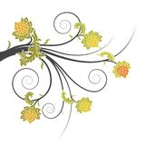 Abstract floral scrolls Royalty Free Stock Photo