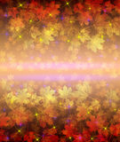 Abstract floral seamless background Stock Photography
