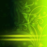 Abstract floral seamless background Royalty Free Stock Images
