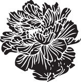 Abstract floral shape Royalty Free Stock Images