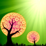 Abstract floral trees on green burst light. Background Royalty Free Stock Photo