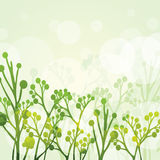 Abstract Floral Vector Background Royalty Free Stock Photo