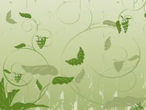 Abstract Floral Vector With Plants, Butterflies Stock Photography