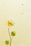 Abstract floral wallpaper. Background texture stock images